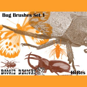 Photoshop brushes bugs, collection, nature