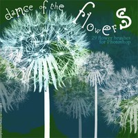 Dance of the flowers