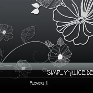 Photoshop brushes flowers, doodle