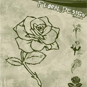 Photoshop brushes roses,doodle