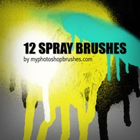 12 Spray Brushes