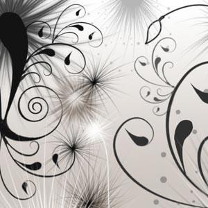Photoshop brushes swirls, floral