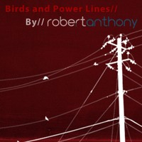 Birds and Power Lines