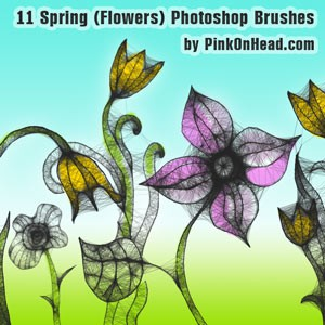 Photoshop brushes flowers, spring, hand-drawn