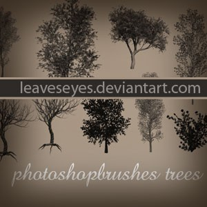 Photoshop brushes trees, silhouette