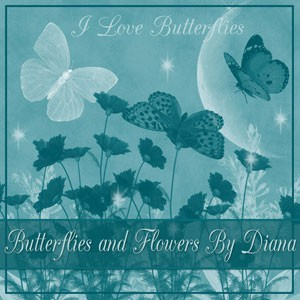 Photoshop brushes butterfly, flower, illustration