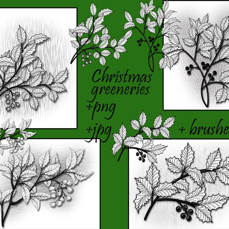 Photoshop brushes christmas, greeneries