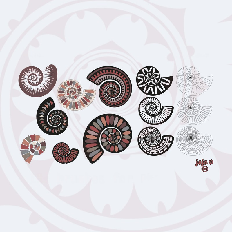 Photoshop brushes ammonite, spiral