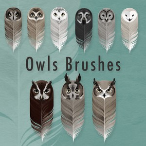 9 Owls Brushes
