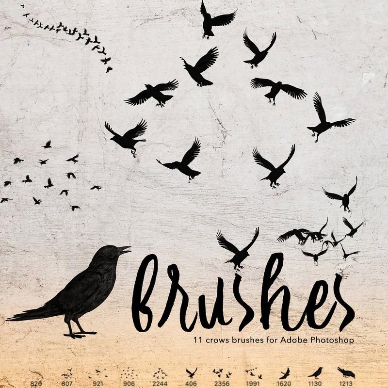 Photoshop brushes animals, birds, crows