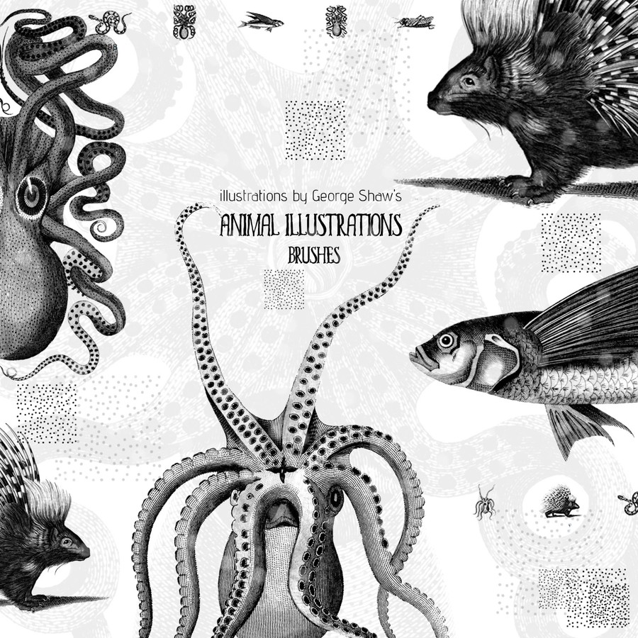 Photoshop brushes animals, illustrations, vintage