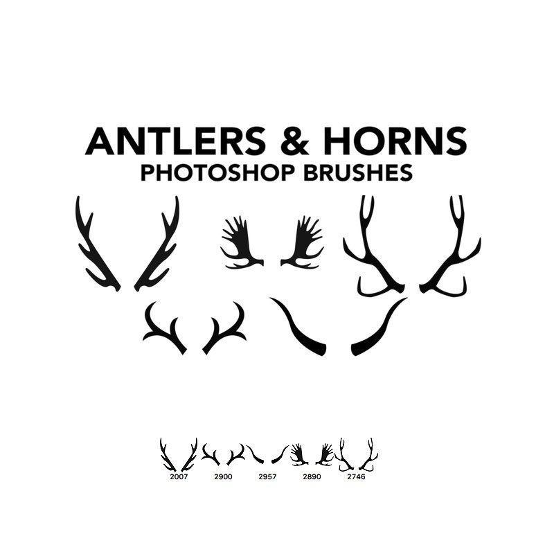 Photoshop brushes antlers,horns