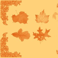 Autumn Leaf Brushset