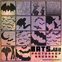 50 Bats Brushes
