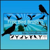 Free Bird Brushes