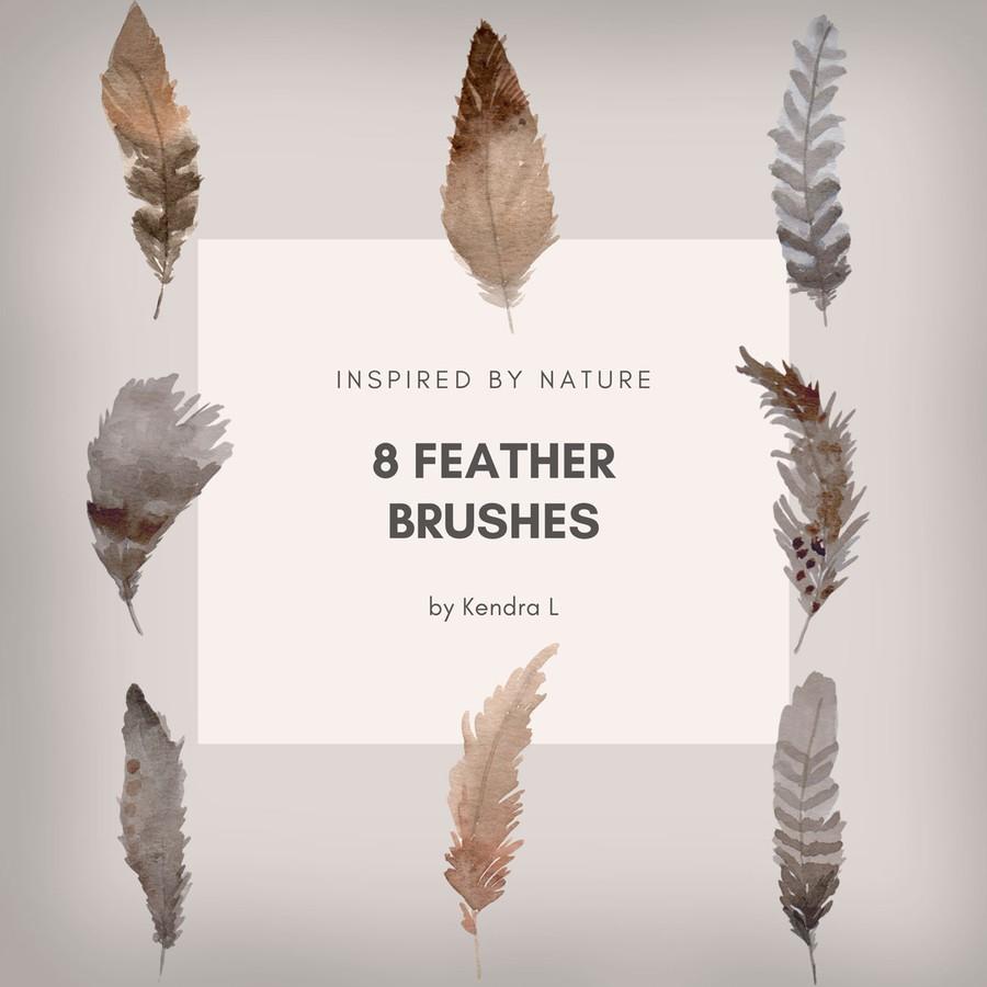 Photoshop brushes birds, feather