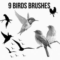 9 Bird Brushes