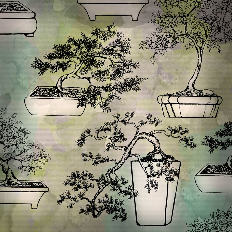 Photoshop brushes bonsai, collection