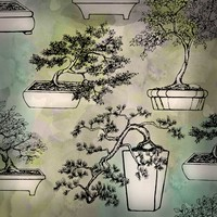 Bonsai Brushes for Photoshop