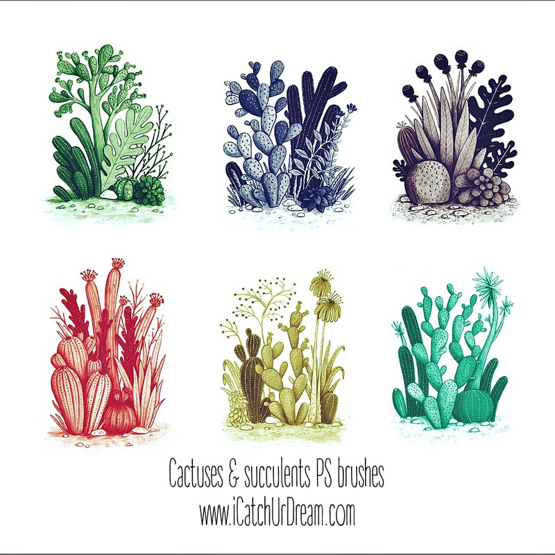 Photoshop brushes cactuses, plants, succulent