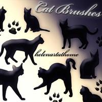 Free Cat Brushes