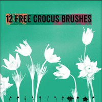 12 Free Crocus Brushes