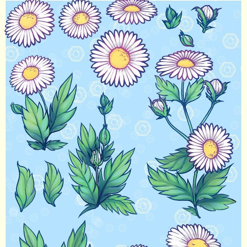 Photoshop brushes flower, daisy