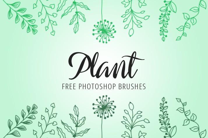 Photoshop brushes doodle, twig, plant