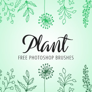 Photoshop Plant Brushes by FixThePhoto
