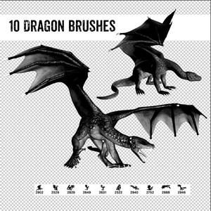 10 Dragon Poses Brushes