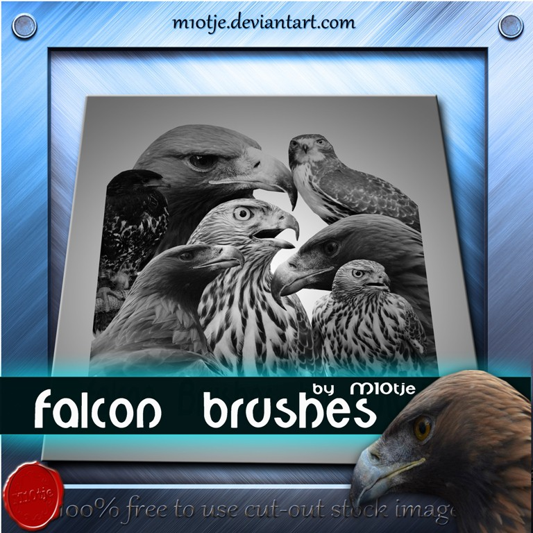 Photoshop brushes falcon