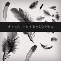 9 Feathers Brushes
