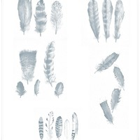 Free Feathers PS Brushes
