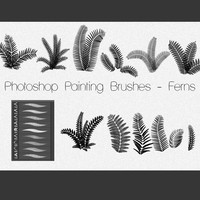 Photoshop Painting Brushes - FERNS