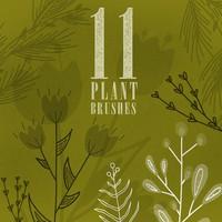 11 Plant Brushes