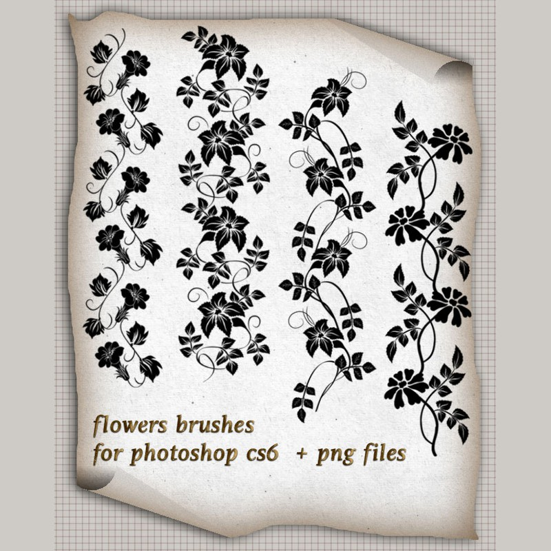 Photoshop brushes flower, floral, borders