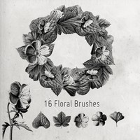 16 Flower and Leaves Brushes