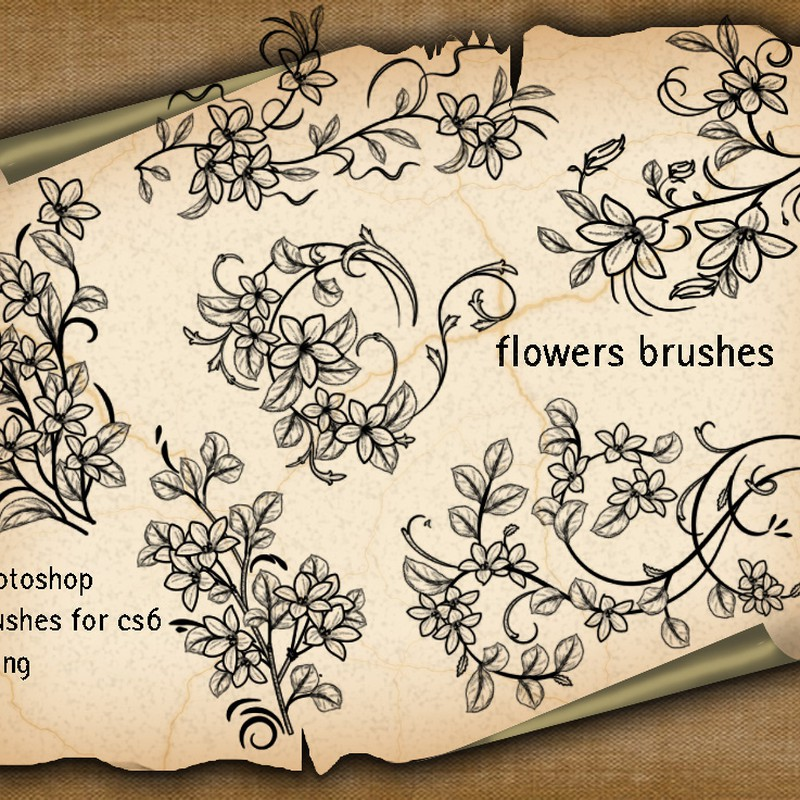 Photoshop brushes floral, ornaments