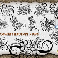 11 Flower Ornaments Brushes