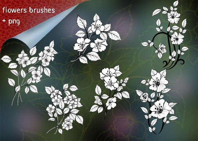 Photoshop brushes floral flower