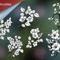 Pack of 6 Flowers Brushes