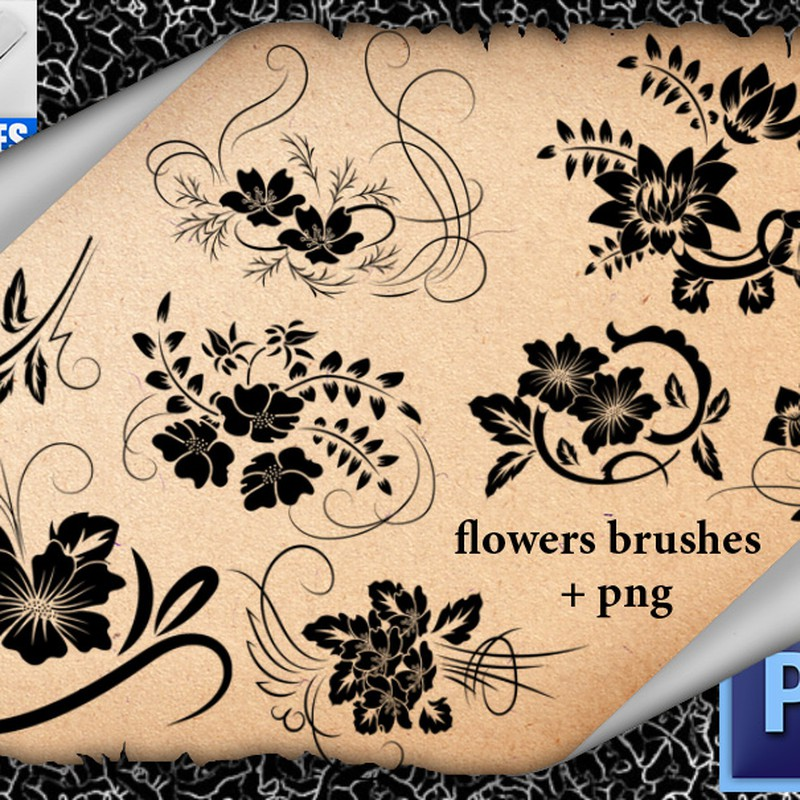 Photoshop brushes ornament, floral