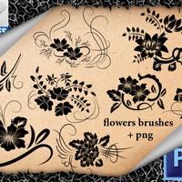 Ornamental Flowers Brushes
