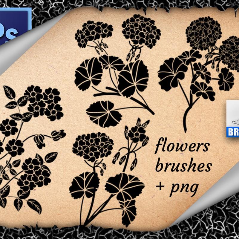 Photoshop brushes flowers