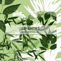 Free Leaf Brushes
