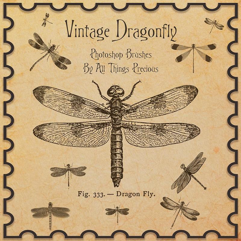 Photoshop brushes dragonfly vintage