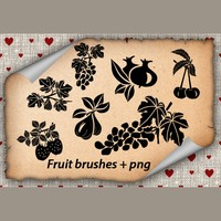 Fruits Brushes