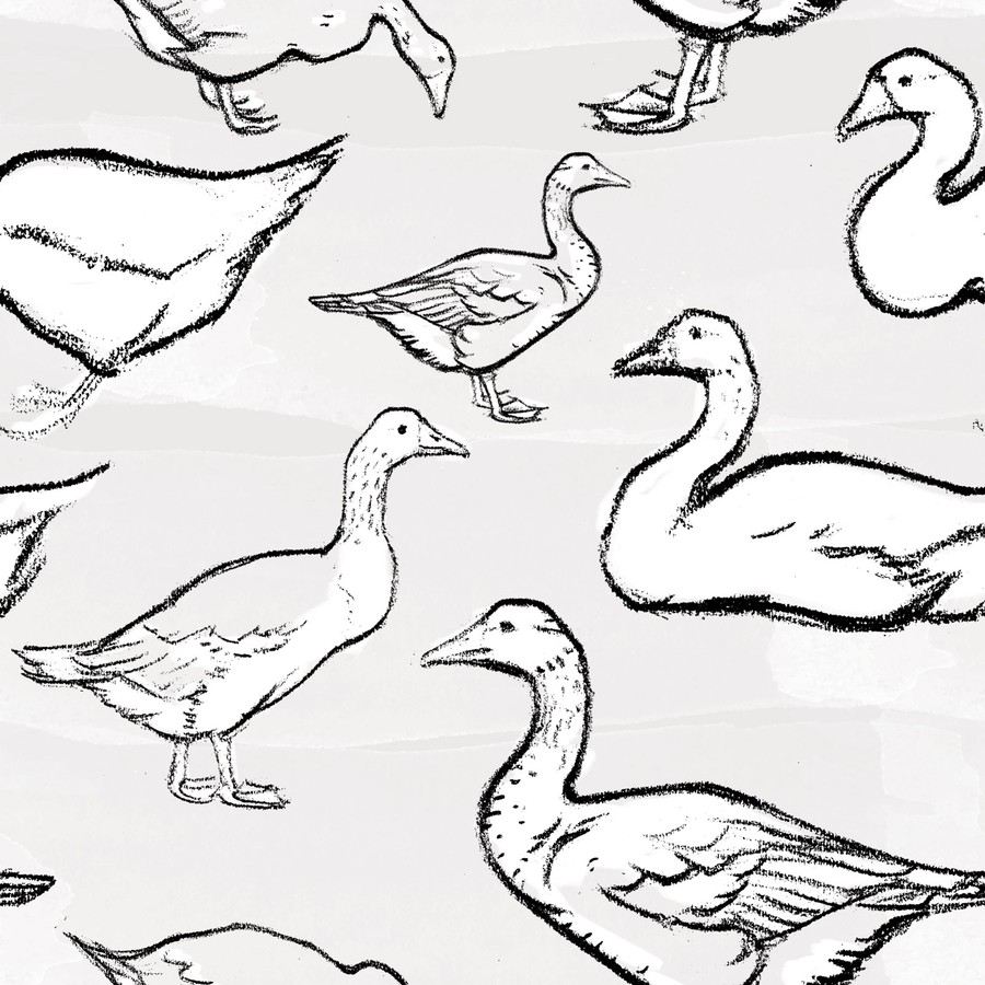 Photoshop brushes goose, outline