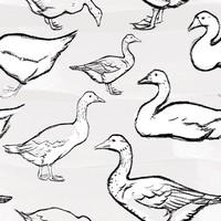 Goose Brushes