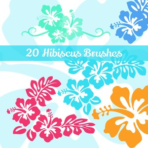 20 Hibiscus Flowers PS Brushes